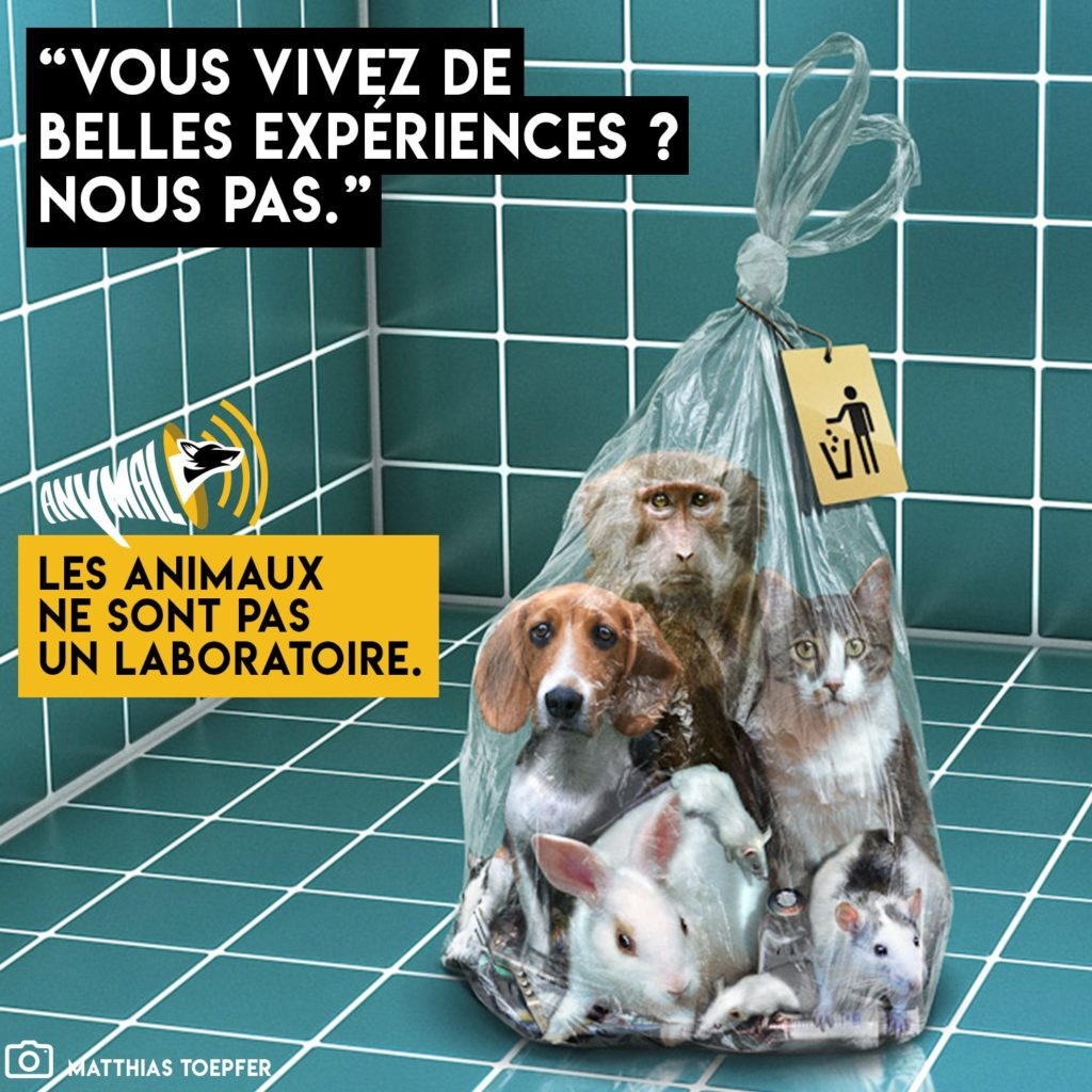 L'association Anymal contre les tests sur les animaux